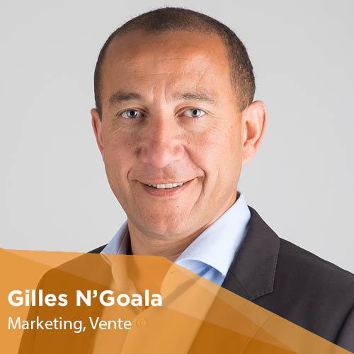 Gilles N'Goala - Enseignant-Chercheur - Montpellier Management