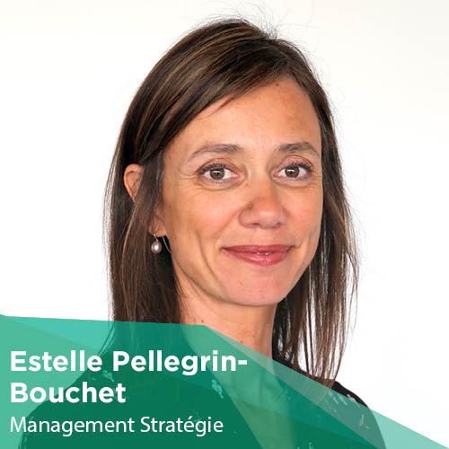 Estelle Pellegrin-Bouchet - Enseignant-Chercheur - Montpellier Management