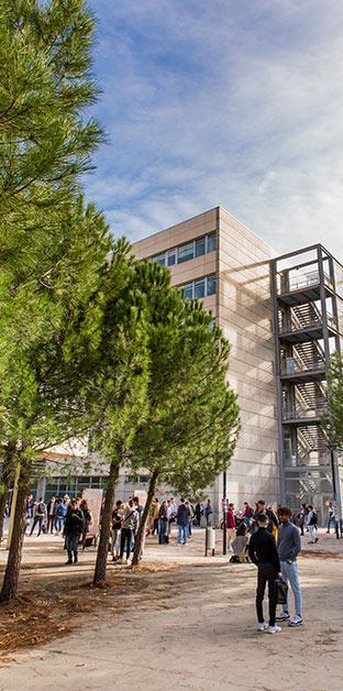 Accueil Montpellier Management