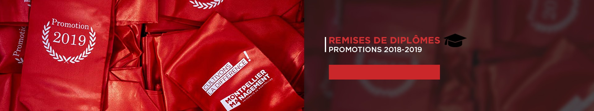 Remises de diplômes promotions 2018-2019 - Montpellier Management