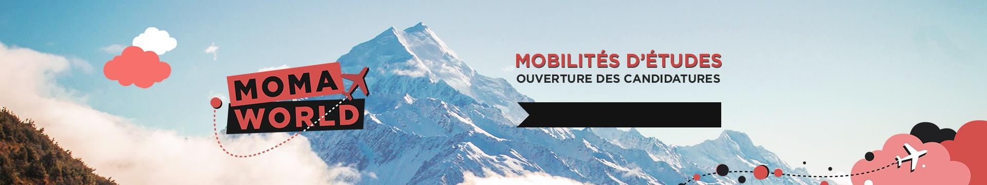 Mobilité internationale - Ouverture Candidatures - Montpellier Management