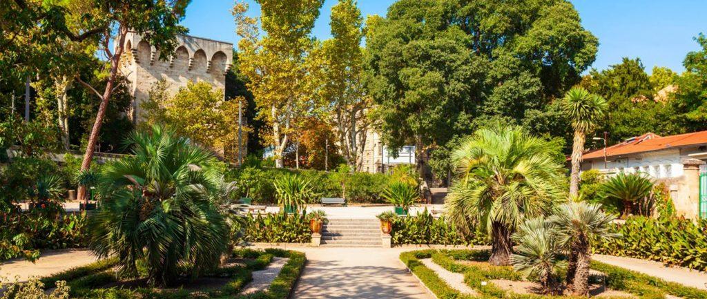 Jardin des plantes - Montpellier Management