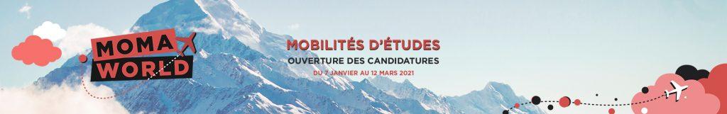 Ouverture candidatures mobilités d'étude - Montpellier Management