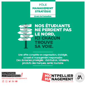 Livret Management Stratégie - Montpellier Management
